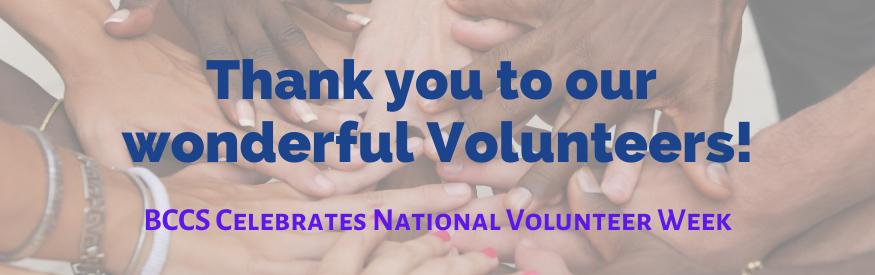 Volunteer Week Web Banner